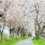 【今から気をつけよう】春の紫外線にご注意
